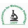 www.amppak.org